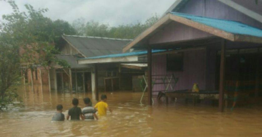 2.021 Jiwa Terdampak Banjir di Kabupaten Tanah Laut